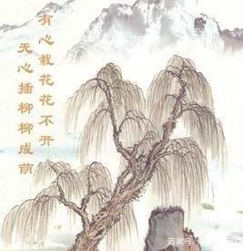 「带雨的诗句大全400首」有意栽花花不开