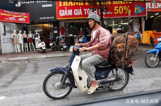越南人吃狗肉,韩国人吃狗肉,中国人吃狗肉,网友