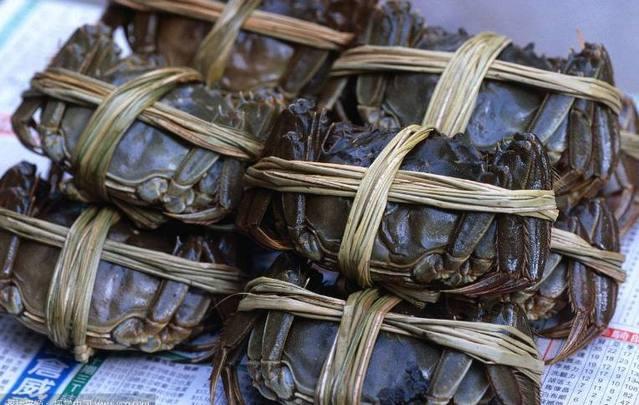 捆蟹大妈月入万元如何做到的 如何捆绑大闸蟹?
