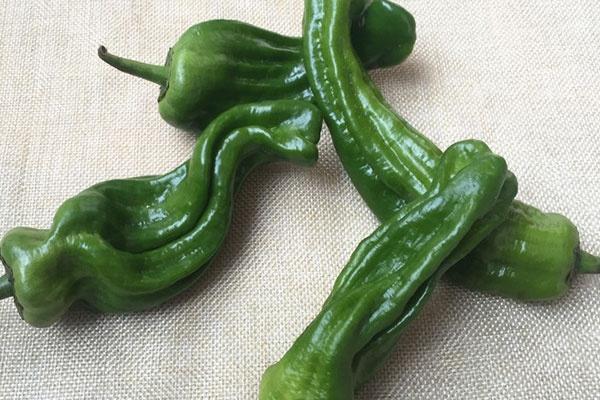 祛湿气的食物不止有红豆、薏米,这3种常见蔬菜,也能够祛湿!