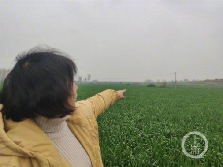 農婦被殺疑兇入獄9年獲賠80餘萬 真兇在哪成謎