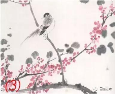 花鸟画图文教程:花鸟小品的各种画法,花鸟画基本技法分解