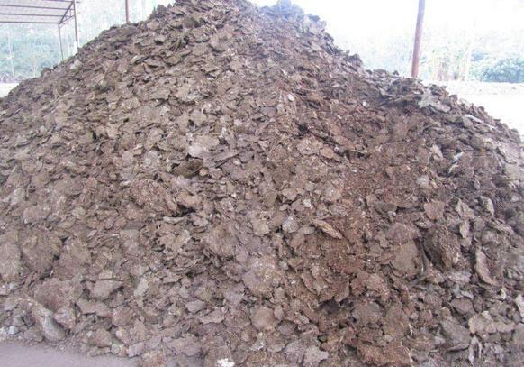 肥料:有机肥、复合肥和水溶肥有什么区别吗?
