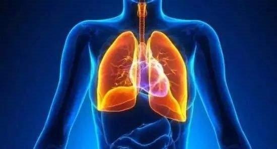 肺有「5怕」,想要肺好,最好一個都別有,可惜很多人都做不到