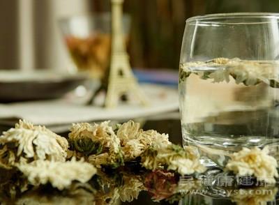 菊花茶的功效与作用有哪些 饮菊花茶有什么好处 网络快讯 第1张