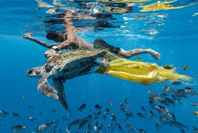 关于环保的图片 保护环境的照片真实照片
