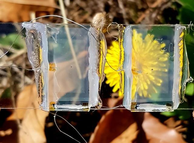 """韓國科學傢研發透明光伏電池 未來或可""""融入""""窗戶和手機屏幕"""