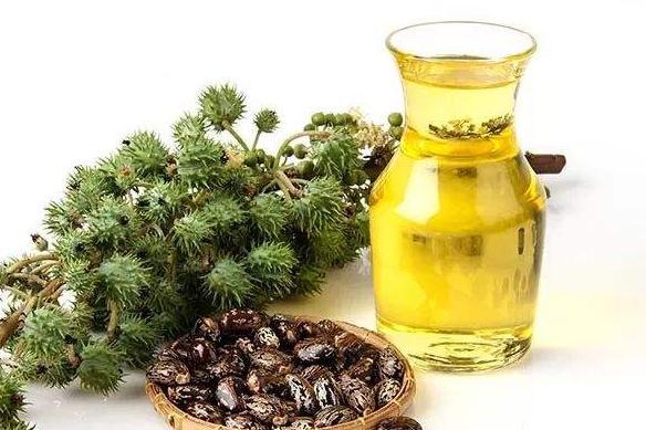美食:蓖麻油,有很强的滑肠作用,让肠燥便秘的症状很快减轻!