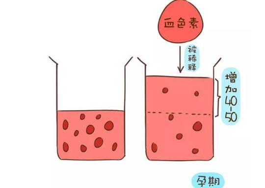 生理 貧血