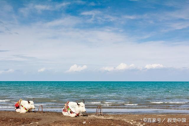 青海湖-仙女湾景区