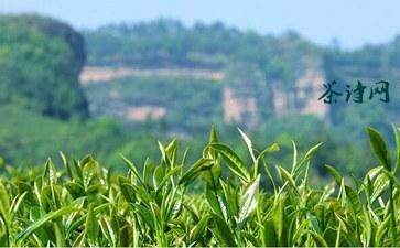 关于都匀历史和茶文化的诗句《匀城颂》注释赏