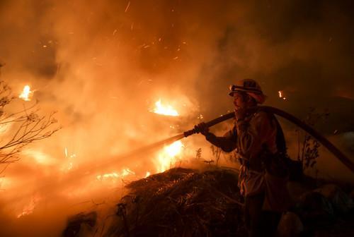 美加州大规模山火又创纪录 特朗普发文批评加州环境法律