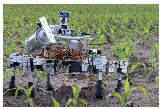 外国农业机器人究竟逆天到什么地步