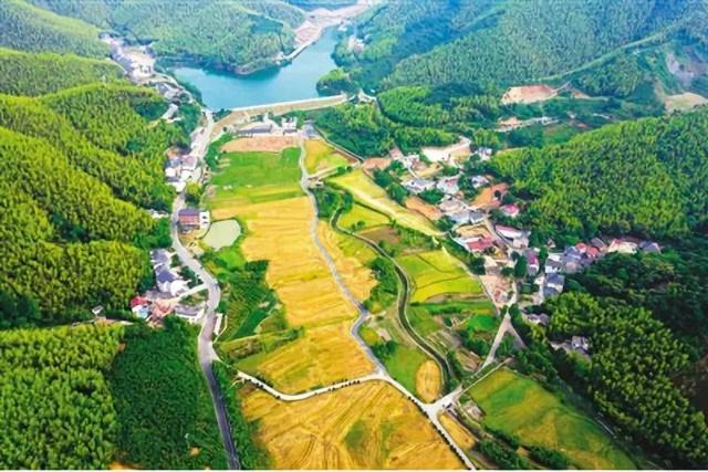 农业庄园+田园综合体+特色小镇