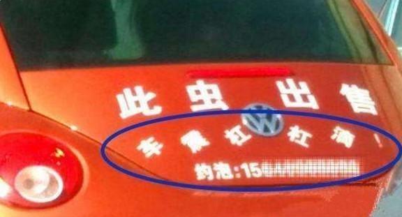 女司机在车上贴这几个字:结果天天被撞