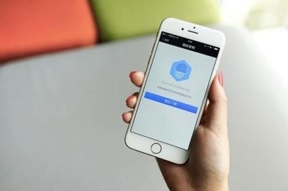接入支付宝苹果付费用户增长12%!苹果CFO大赞方便