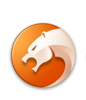 猎豹安全浏览器