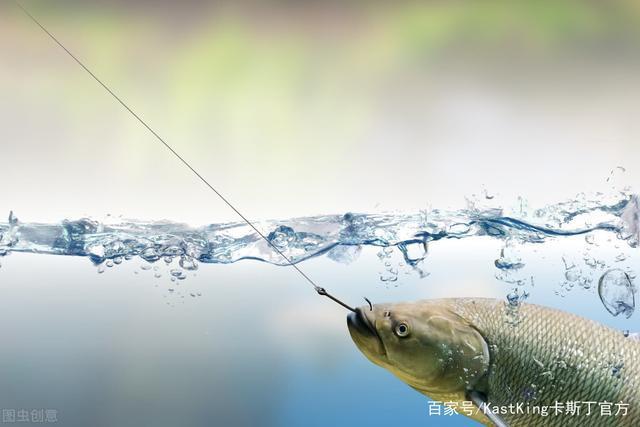 懂水溫的人,才是釣魚的高手