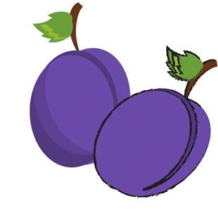 幼儿英语水果名称 宝宝水果英语
