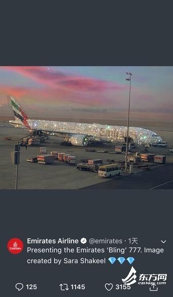 镶满施华洛世奇的飞机照片曝光是真的吗?飞机为何镶满施华洛世奇