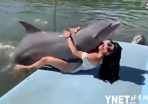 """u=3484974513,2631749603&fm=173&app=49&f=JPEG?w=500&h=351&s=87B65E8106003743C81045820300B0C3 - 遊客在古巴度假 海豚太過""""友好""""令美女遊客招"""
