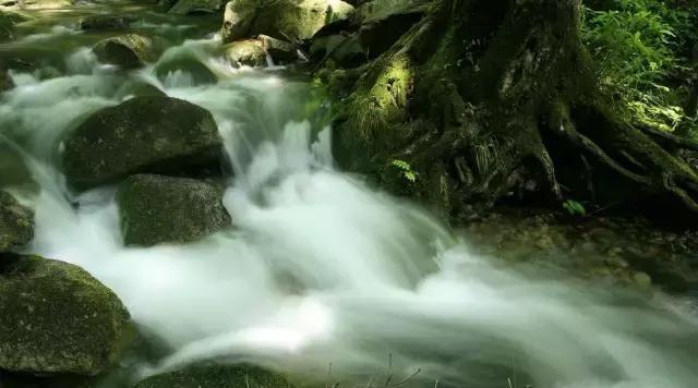 西峽老君洞這些精美的瀑布堪比九寨溝,你見過幾個?答對有獎哦