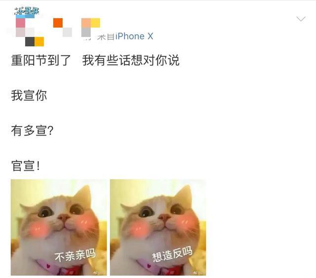 赵丽颖官宣结婚男饭却疯了:我与冯狗不共戴天!