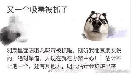 陈羽凡吸毒被抓 白百合陈羽凡离婚内幕