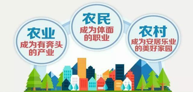 李春生:实施乡村振兴战略 供销社做什么与怎么
