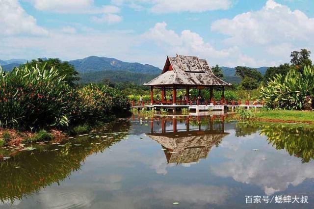 中国西双版纳旅游攻略,内附带干货,旅客:真的是天堂!