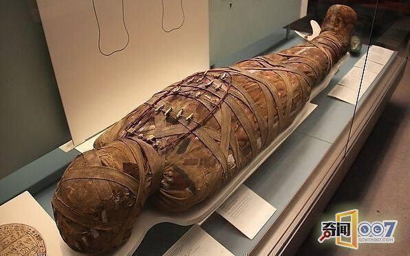 【木乃伊也能够复活,在棺材当中发现抓痕!】放木乃伊的棺材叫什么