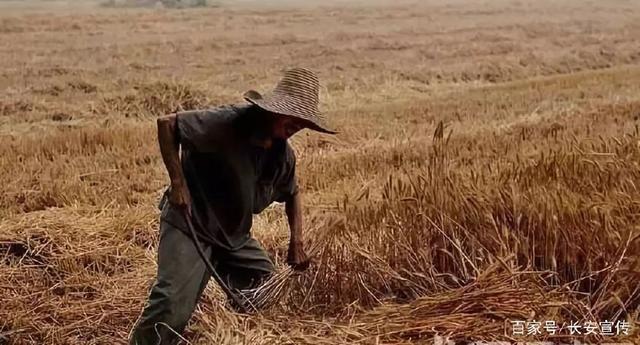 长安改革开放四十年农业农村发展变迁掠影