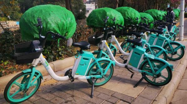 昆明:亂停亂放亂騎共享單車將被禁騎半年