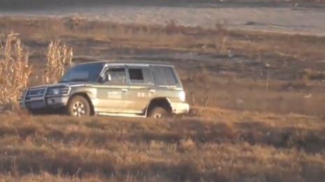 4辆越野车开进湿地射杀东方白鹳 是怎么回事?