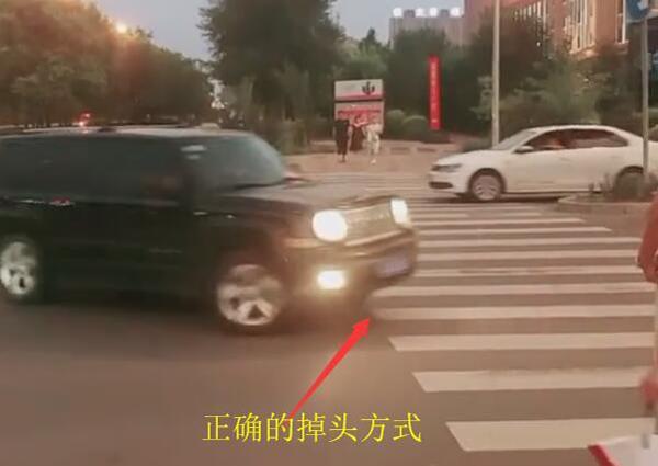 开车掉头,开车掉头违章,红绿灯掉头,违章查询网,蚂蚁车生活查询办理
